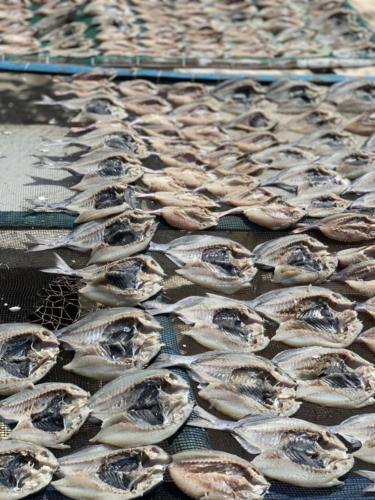El Nido Paradise Tour Island Dried Fish
