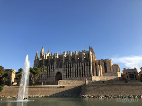 Palma Cathedrale