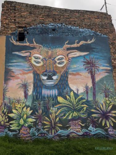 Graffiti Tour Bogota